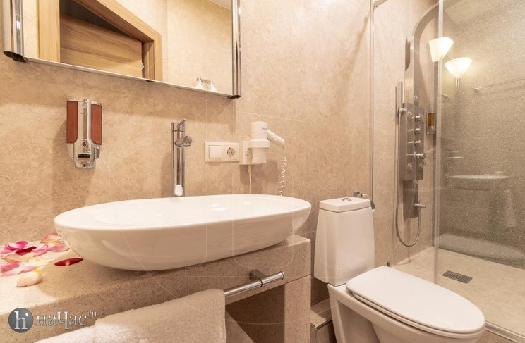 Париж wc